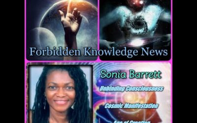 Unbinding Consciousness/Cosmic Manifestation/Age of Creation with Sonia Barrett
